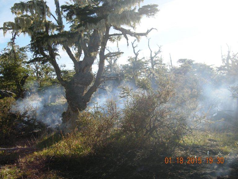 Este Sbado 17 Tuvo Lugar El Tercer Incendio Forestal Del Ao En Lmite Oeste Camping Norte Ex Jhonn Goodal Propiedad De La Estancia Viamonte